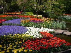 Beautiful Netherland Flower Garden