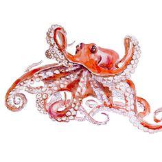 Octopus Original Watercolor painting fine art artwork wall home decor ocean sea animal illustration via Etsy Red Octopus, Octopus Art, Octopus Photos, Octopus Drawing, Art And Illustration, Watercolor Animals, Watercolor Paintings, Painting Art, Ocean Paintings