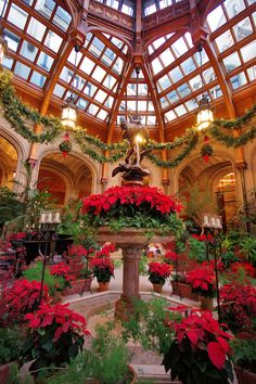 Winter Garden inside BIltmore House - with Christmas decorations for 2016. Asheville NC