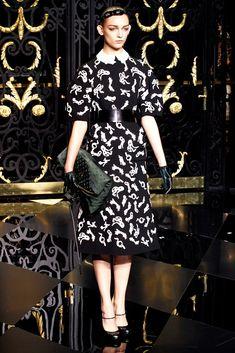 Louis Vuitton Fall 2011 Ready-to-Wear Fashion Show - Daga Ziober (ELITE)