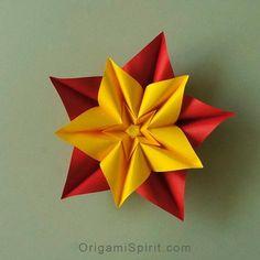 Star or 5-petalled flower