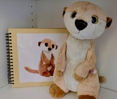 Teddy Bear, Toys, Animals, Organization, Special Needs Children, Kids Book Series, Initial Sounds, Classroom Decor, Teaching Ideas