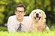 Receita de comida caseira para cachorro