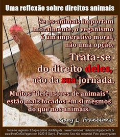 """A moralidade selfie"": A Degradação Moral do Movimento Animal   http://www.veganospelaabolicao.org/vegan/index.php/gary-francione/523-a-moralidade-selfie-a-degradacao-moral-do-movimento-animal  If animals matter morally, veganism is a moral imperative, and not an option. It's about *their* rights and not *your* ""journey."" Many ""animal advocates"" are more focused on themselves than they are on the animals. ~ Gary L. Francione"