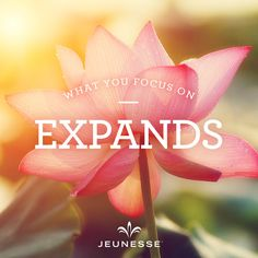 What you focus on expands.  -