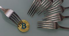 CCN provides some information on how crypto users should prepare for the upcoming Bitcoin Cash hard fork, which is scheduled for Nov. Source: How to Prepare for Next Week's Bitcoin Cash Hard Fork Bitcoin Mining Software, Bitcoin Mining Rigs, What Is Bitcoin Mining, Perfect Image, Perfect Photo, Great Photos, Cool Pictures, Make Money Online, How To Make Money