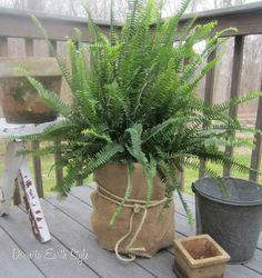 Bucket & Burlap Planter