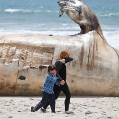 A woman and a young boy cover part of their noses as the walk past a massive carcass of a whale at a popular California surfing spot in San Clemente Calif. #APPhoto by Lenny Ignelzi  This photo is part of World in Review a collection of five photo galleries curated monthly by Associated Press photo editors from each region of the world: Asia Europe and Africa the Middle East Latin America and the Caribbean and the United States. See the full post at blog.apimages.com  #boy #beach #whale…