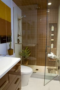 Bathroom, Shower Ideas For Small Bathrooms Decorating With Glass Shower Door And Brown Tiled Wall Inside Combined With Dark Maple Brown Cabinet And Potted Plants: Simple Shower Ideas for Small Bathrooms