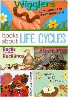 Books About Animal Life Cycles! Fabulous pictures books for preschoolers- perfect for spring!