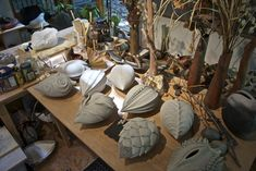 ceramic seed pods | Cross-Pollination: Ceramic Seed Pod Project - Ms. Gross
