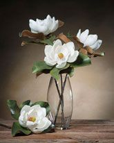 Small White Silk Tree Magnolia Bloom Stems | Faux Magnolia Stem Pieces