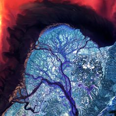 The Yukon River Delta