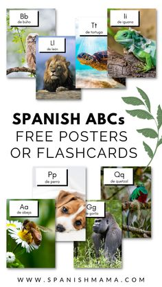 Preschool Spanish, Teaching Spanish, Learning The Alphabet, Kids Learning, Spanish Basics, Games For Kids, Free Printables, I Am Awesome, Posters