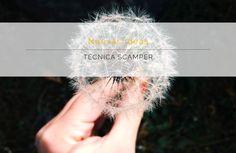 Genera ideas creativas con la técnica SCAMPER - Comunique Studio