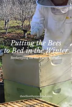 Today, I'm talking all about putting the bees to bed in the winter. Overwintering bees means.honey on the homestead! Watch our video to learn more. Beekeeping For Beginners, Raising Bees, Bee Boxes, Overwintering, Bee Farm, Backyard Beekeeping, Bee Friendly, Winter Vegetables, Save The Bees