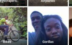 Software do Google provoca polêmica ao identificar negros como gorilas