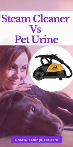 Get the best steam cleaners for the pet urine if you are a pet owner. Steam cleaners are useful as you can't live in a house that has urine stains. Laminate Flooring Cleaner, Cleaning Tile Floors, Floor Cleaning, Deep Cleaning, Home Steam Cleaner, Steam Cleaners, Stain Remover Carpet, Stain Removers, Cleaning Pet Urine