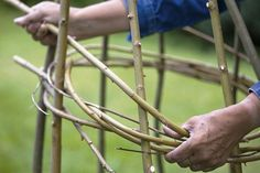 If seized by the DIY urge, you can follow Live for Gardening's step-by-step instructions to make a willow obelisk.