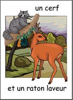 Les animaux and other great flashcards