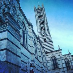 Next time I am in Siena, this would make a perfect viewpoint #Siena #Italy #Duomo #SoWantToClimbThat #Viewpoint #HopeThereAreHaystacksNearby