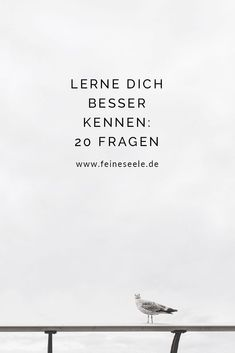 In diesen 20 Fragen, steckt das Potential unser Leben auf den Kopf zu stellen un… In these 20 questions, there is the potential to turn our lives upside down and get to know each other even better. 20 Questions, This Or That Questions, Good To Know, Feel Good, Self Development, Self Improvement, Motivation Inspiration, No Time For Me, Happy Life