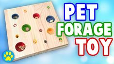 DIY Forage Toy For Small Pets
