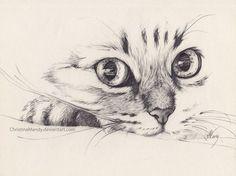 Immagine di drawing, cat, and art