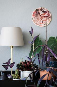 Urban Jungle Bloggers: Plant Shelfie II · Happy Interior Blog Plants Indoor, Indoor Garden, Potted Plants, Garden Oasis, Garden Pots, Botanical Decor, Funky Home Decor, Shelfie, Houseplants