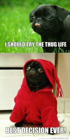 The thug life is real