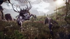 free desktop backgrounds for the witcher 3 wild hunt