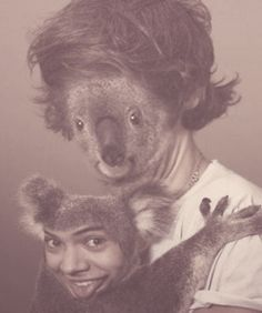 Another example directioners shouldn't be allowed to use photoshop>>>I'm sorry but this is funny !!!! :)