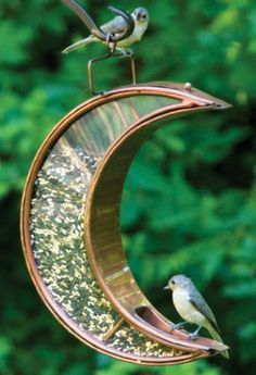 You'll want to hang this Moon Bird Feeder in a place that you can watch it all day...or all night.