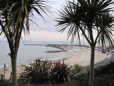 View from the gardens to the Cobb, Lyme Regis Lyme Regis, Places Ive Been, Natural Beauty, Beach, Water, Gardens, Outdoor, Image, Art