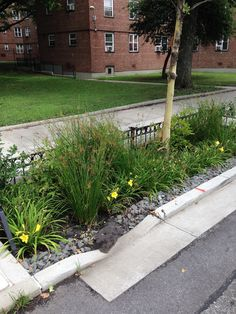 Green Infrastructure Demo Areas