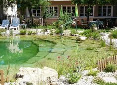 Natural Pools are a swimming pool and pond combined that require no chemicals and very little maintenance. Once everything gets settled in properly apparently the water clears and then stays clean and clear. They can look as formal or natural as you want.