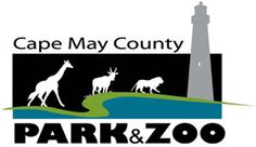 Cape May Zoo. Great little zoo, and it is 'free'. Donations are accepted, rather than a mandatory fee. Had a lot of fun with the family