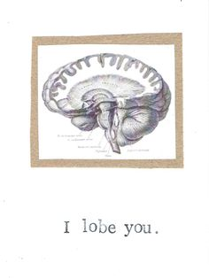 This is your brain on loves! I Lobe You Card by BlueSpecsStudio, $3.00