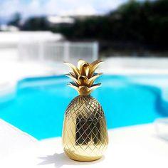 #beach #pool #palmtrees #drink #turquoise #island #islandlife # islandstyle #bermuda #summer #summer17 #wedding #dreamwedding #honeymoon #travel #traveler #travelerslife #worldtravelerslife #beachwedding #palmtrees #beautifuldestination #vacation
