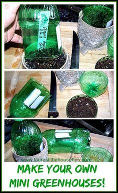 Make your own Mini Greenhouses – DIY for Seedlings