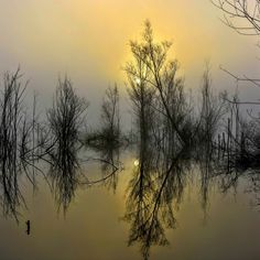 Sunrise - Poland - zoltán kovács - Google+