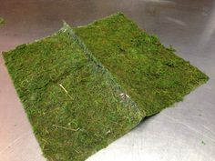 Moss mat 16 x 18 inches by PetalandForrest on Etsy, $6.00