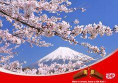 Kit Kat(ネスレ日本 キットカット)/桜 sakura/富士山 Fuji