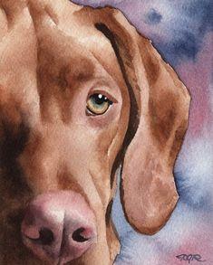 HUNGARIAN VIZSLA Dog Signed Art Print by Artist DJ Rogers