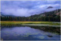 Breathtaking...Jay Dash Photography