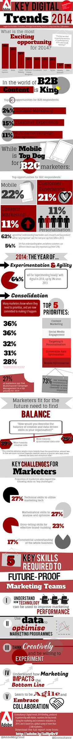 Customer Experience and Content Marketing Top 2014 Digital Trends - Digital Europe
