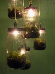 unique terrarium ideas | brilliant terrarium. These pendant light terrariums make for a unique ...
