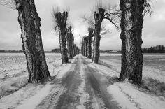 Idag kom vintern och kylan tillbaka. Jag gillar den inte men jag gillar dess möjligheter. #ig_daily #meralink #tv4 #tv4vädret #igscandinavia #bestofscandinavia #scandinavia #sweden #linköpinglive #linköping #ignature #nature #nature_perfection #blackandwhite #winter #vinter #canon5dmkiv