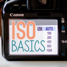 Getting to Know Your Camera: ISO Basics. Photo Credit: Ashley Sisk. http://dailymom.com/capture-2/getting-to-know-your-camera-iso-basics/