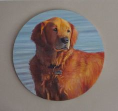 "Brooksie, 2012, Oil on Round Canvas, 16 x 16"" (Signed lower left - Harding)"